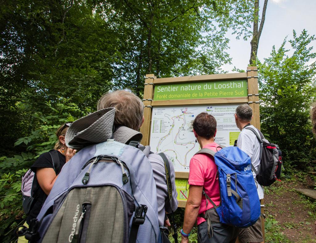 Des personnes devant le panneau du sentier du Loosthal